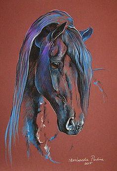 Fresian horse by Paulina Stasikowska Watercolor Animals, Watercolor Art, Horse Face Drawing, Indian Horses, Horse Artwork, Animal Paintings, Horse Paintings, Art Drawings Beautiful, Horse Silhouette