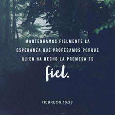 Sigamos confiando en que Dios nos salvará. No lo dudemos ni un instante porque él cumplirá lo que prometió. Hebreos 10:23 @youversion @ibvcp #buenosdias #islademargarita #venezuela