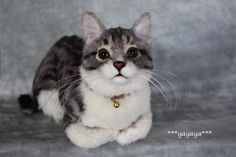 This kitty cat looks so real! Needle felted by Japanese Fiber Artist, Yayaya~