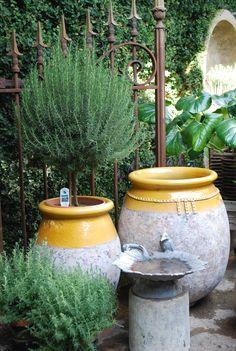 Dirt Simple | Gardening and Landscape Blog by Deborah Silver