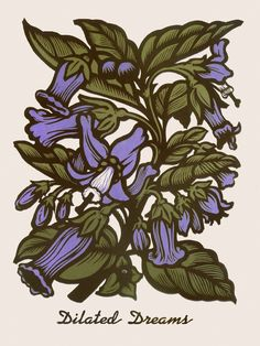 Deadly Nightshade ~ Martin Mazorra's Language of Flowers, Poison Flower Series ~ Color Woodcut and Letterpress print, 18 x 24 inch, French's 100 lb. Cover, Insulation Pink. Handcut, Handprinted with moveable type. Edition of 20.