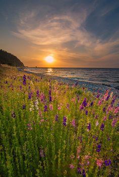 Still Spring | Explore Vagelis Pikoulas' photos on Flickr. V… | Flickr - Photo Sharing!