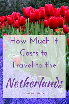 The Netherlands is more than just Amsterdam. Take some time to explore other cities and regions. Here's how much we spent traveling in the Netherlands.