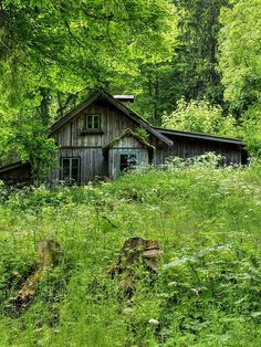 Old House in the Woods | Flickr - Photo Sharing!