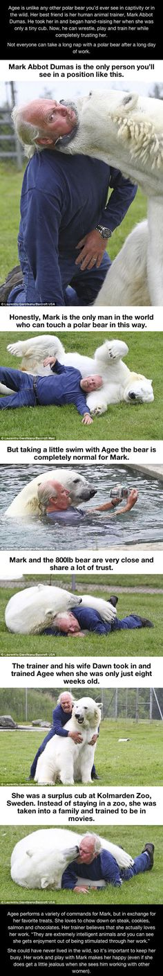I want a polar bear!