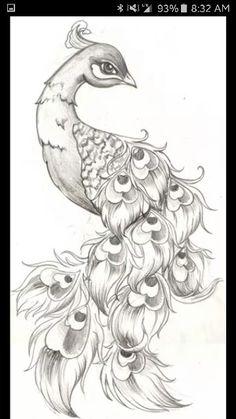 Pretty Peacock Tat