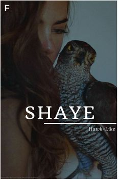 Shaye meaning Hawk-Like English names S baby girl names S baby names female names whimsical baby names baby girl names traditional names name