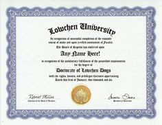 Lowchen Dog Degree: Custom Gag Diploma Doctorate Certificate (Funny Customized Joke Gift - Novelty Item) by GD Novelty Items. $13.99. One customized novelty certificate (8.5 x 11 inch) printed on premium certificate paper with official border. Includes embossed Gold Seal on certificate. Custom produced with your own personalized information: Any name and any date you choose.