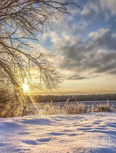 Winter In Norway By Rose-Maries Pictures Rose Marie, Leaving Home, Green Fields, Winter Time, The World's Greatest, Norway, Serenity, Fine Art America, Art Pieces
