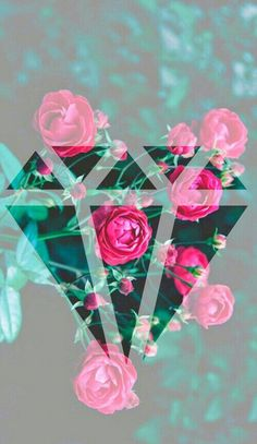 we heart it wallpaper | ... , roses, summer, sun, tumblr, wallpaper, we heart it - image #333554