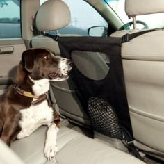 Back Seat Barrier for pets. Perfect for those pets that love to stick their heads up into the driver's way and make mischief, this harness blocks the space between the two front seats.