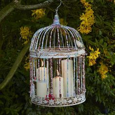 Vogelkäfig mit Kerzen