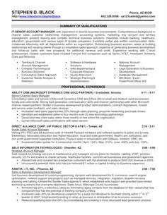 3393 best resume templates images on pinterest resume template