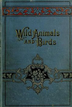 Curious and instructive stories about wild animals and birds Cover title: Wild animals and birds Physical Description: 340 p., leaf of plates : ill. Book Cover Art, Book Cover Design, Book Design, Book Art, Vintage Book Covers, Vintage Books, Vintage Paper, I Love Books, My Books