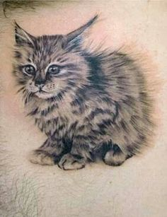 Cat tattoo- kinds real looking