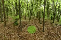 Land art of Sylvain Meyer:Green forest pit.
