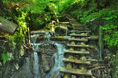 Slovak Paradise (Slovensky Raj) national park with countless trails and ladders. Great Places To Travel, Places To Visit, Bratislava, Heart Of Europe, Danube River, Beautiful Beaches, Day Trips, The Good Place, Travel Destinations