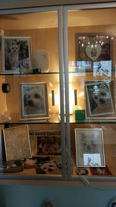 Flat Screen, Frame, Home Decor, Animals, Homemade Home Decor, Flat Screen Display, A Frame, Frames, Hoop