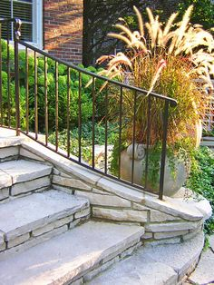 front steps idea wilmette residence landscape traditional landscape