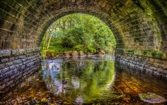 Light at the end of the tunnel - K3v1n5 - ...or to be precise under the bridge over Beldon Burn at Baybridge near Blanchland in Northumberland. The burn flows into Derwent Reservoir thereafter becoming the River Derwent which marks the bounda... http://ift.tt/2c9Eu89 IFtemppicpinned in Building blocksdownld in ios #September 9 2016 at 08:35AM#via IF  I love the reflection in the water, Blanchland is such a lovely place!