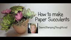 How to make Paper Succulents with Dawn - YouTube