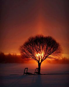 The warmth of winter. Courtesy of The Urban Conversion's Facebook Timeline - https://www.facebook.com/TheUrbanConversion
