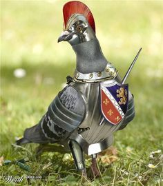 Sir Lancelot 'The brave'  By Entanglement.  Armored Animals 4 - Worth1000 Contests