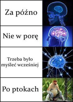 Poland, Haha, Memes, Funny, Anime, Humor, Ha Ha, Meme, Funny Parenting