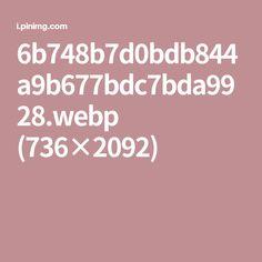 6b748b7d0bdb844a9b677bdc7bda9928.webp (736×2092)