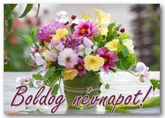 Névnap - jolka.qwqw.hu Name Day, Merry Christmas, Happy Birthday, Table Decorations, Cake, Tulips, Floral, Decorations, Merry Little Christmas