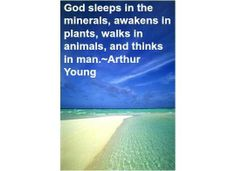 Empower Network - Tino's Daily Quote of the Day_12-16-2013 God sleeps in the minerals, awakens in plants, walks in animals, and thinks in man.~Arthur Young   #qotd #quotes #retweet #success #thegrowrichproject