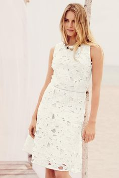 Buy Floral Lace Dress from the Next UK online shop
