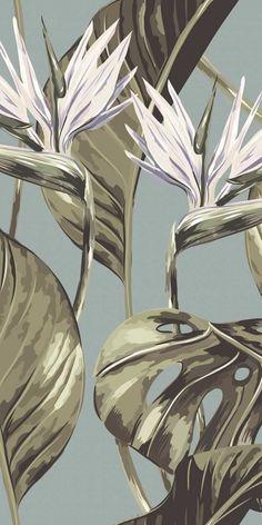 Feathr Bird of Paradise Wallpaper Tree Wallpaper Mural, Graphic Wallpaper, Animal Wallpaper, Flower Wallpaper, Nature Wallpaper, Beautiful Wallpaper, Paradise Wallpaper, Tropical Wallpaper, Simple Wallpapers