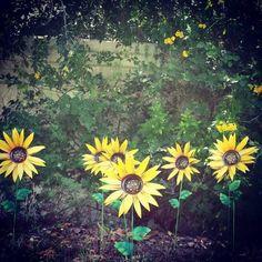 Pink Sunflower Garden Stakes Https://www.etsy.com/listing/399490621/metal  Sunflower Garden Stake Metal Yard | Gardening U0026 Flowers | Pinterest | Pink  ...