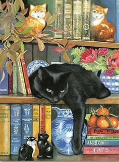 Bookshelf Cat.  Books and a black cat. Perfect match. Love both.