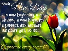 Each New Day Is A Beginning