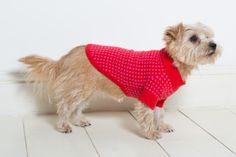 Cashmere Dog Sweaters from Ruby Rufus