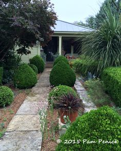 Drive-By Gardens: Formal, whimsical, and wildflower gardens in central Austin   Digging