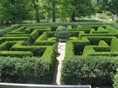 Getting lost together! Hedge Maze by Vironevaeh, via Flickr