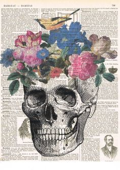 Sucre Skull.Catrina Gift.French,Colourful/ Vintage.flowers.Antique livre