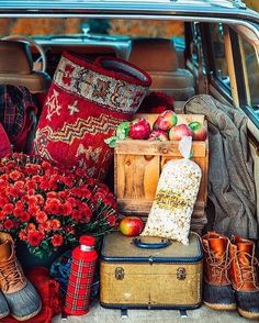 """396 Likes, 5 Comments - Lucy Rose (@birdie_farm) on Instagram: """"Ooooh baby! If we had had this setup by Sarah @sarahkjp when we took a drive up the canyon this…"""""""