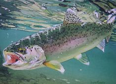 Hooked- Diane Michelin   #flyfishing #fly #fishing