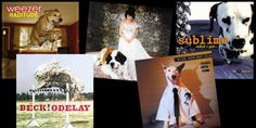 20 Albums With Dogs on the Cover – Pawesome!