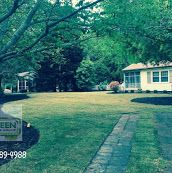 Before & After, Zenith Zoysia Lawn