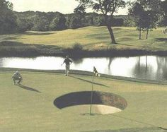 Expert Golf Tips For Beginners Of The Game. Golf is enjoyed by many worldwide, and it is not a sport that is limited to one particular age group. Not many things can beat being out on a golf course o Funny Golf Pictures, Crazy Pictures, Pictures Images, Funny Images, Golf Tips For Beginners, Putt Putt, Hole In One, Golf Humor, Play Golf