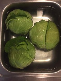 Do you have cabbage in your garden you need to preserve? Instead of trying to cook it all now, learn how to freeze fresh cabbage heads. It& easy! Freezing Vegetables, Canning Vegetables, Frozen Vegetables, Veggies, Freezing Cabbage, Freezing Cilantro, Freezing Potatoes, Bacon Chips, Pumpkin Risotto