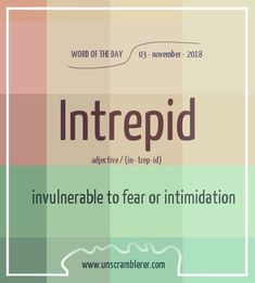 invulnerable to fear or intimidation Unusual Words, Weird Words, Rare Words, Unique Words, Cool Words, Fancy Words, Words To Use, Pretty Words, New Words