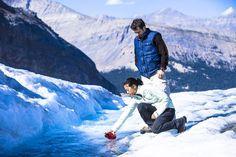 Iconic Glacier Tour