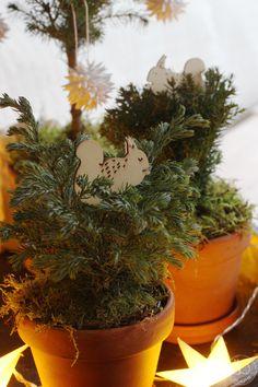 Oravanpesä: JOULUKUUSIMETSÄ. Amsterdam, Planter Pots, Instagram