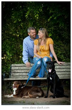 The couple are staring at one another with their dogs